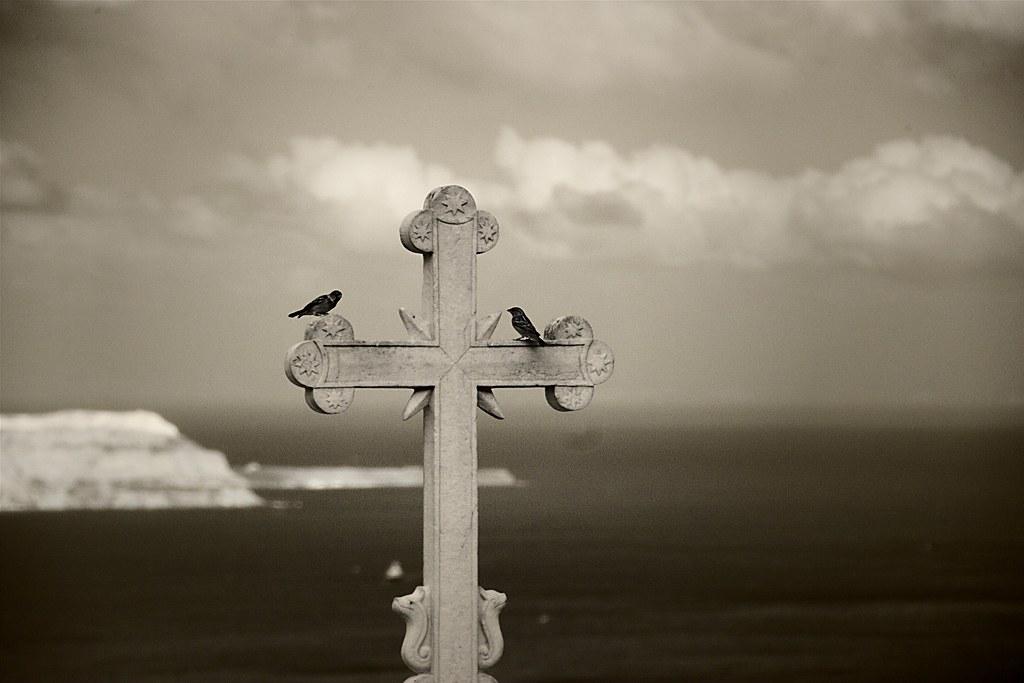 Birds on a Greek Cross