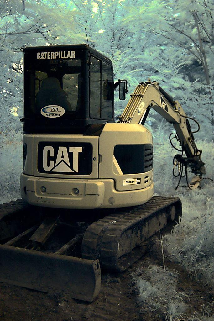 CAT (IR, 2011)