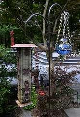 Bird Feeders (f/16.0; Lytro Illum)